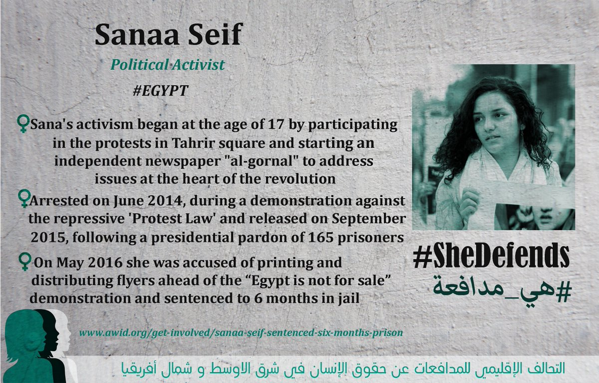 She Defends - Sanaa Seif