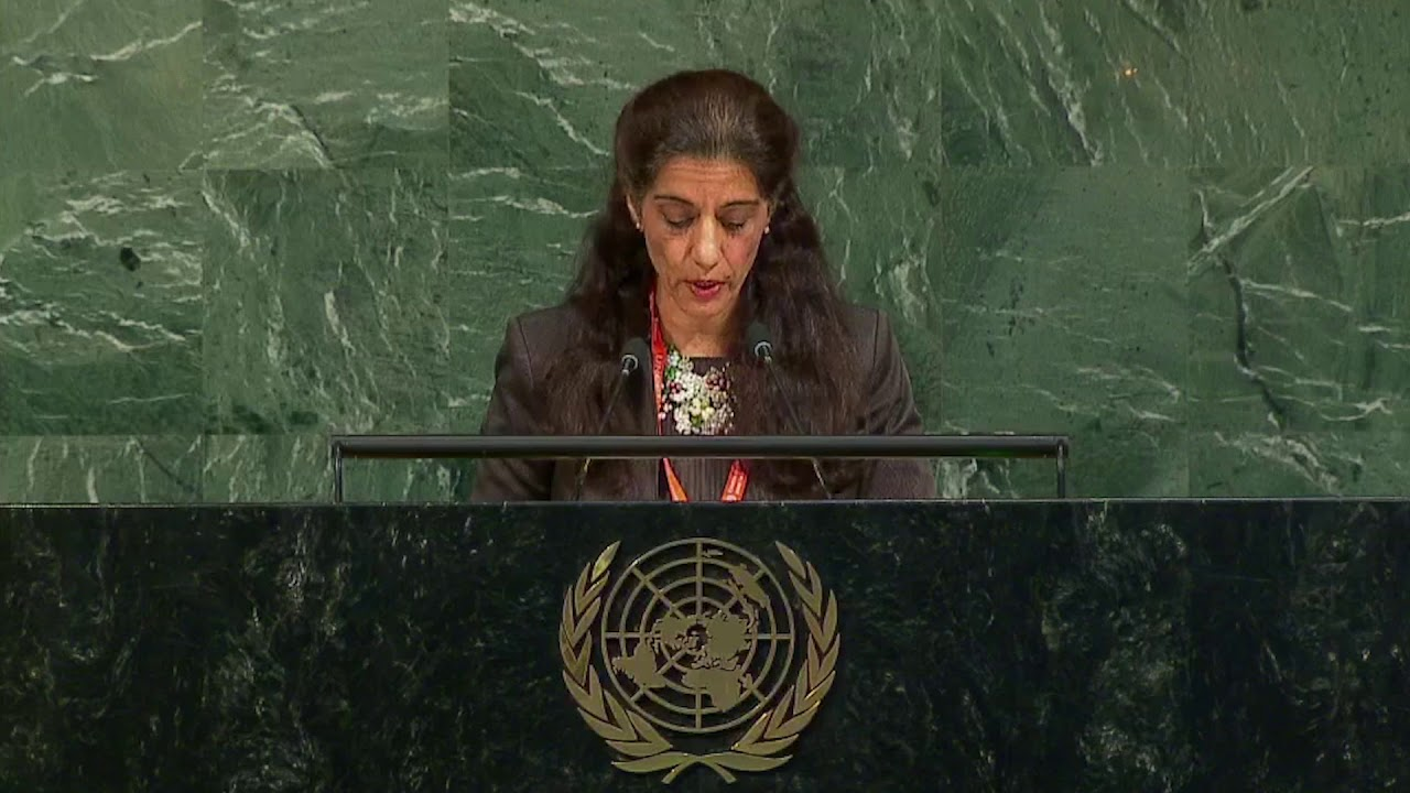 Video: Sanam Naraghi Anderlini's Speech at UNGA during the 6th Review of the UN Counter Terrorism Strategy